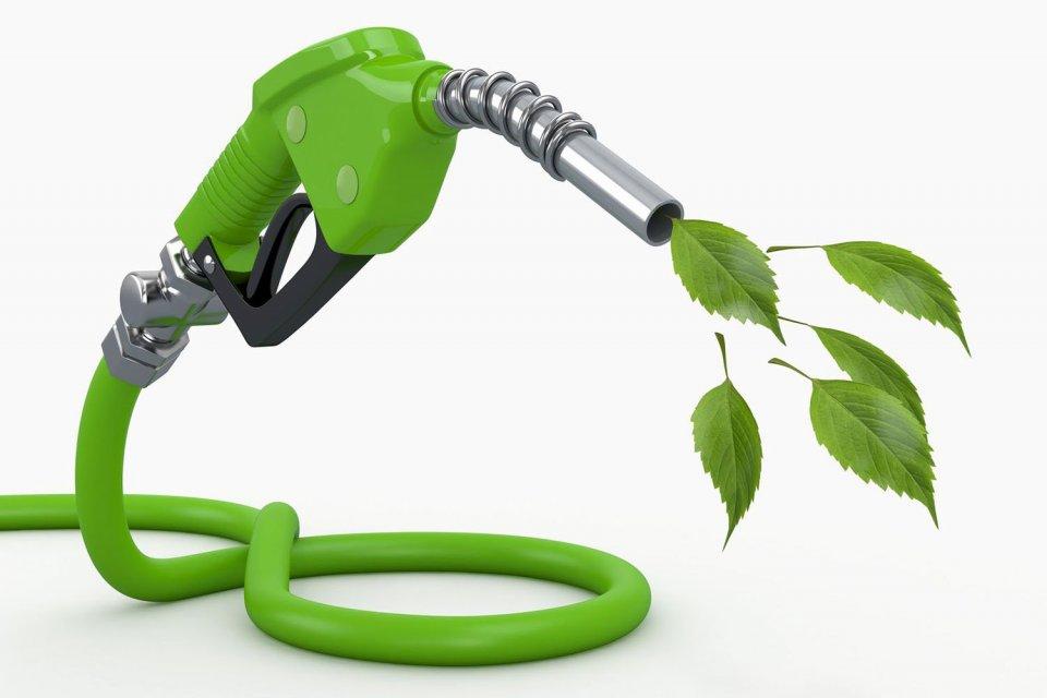 Tantangan Aspek Lingkungan dari Program Biodiesel