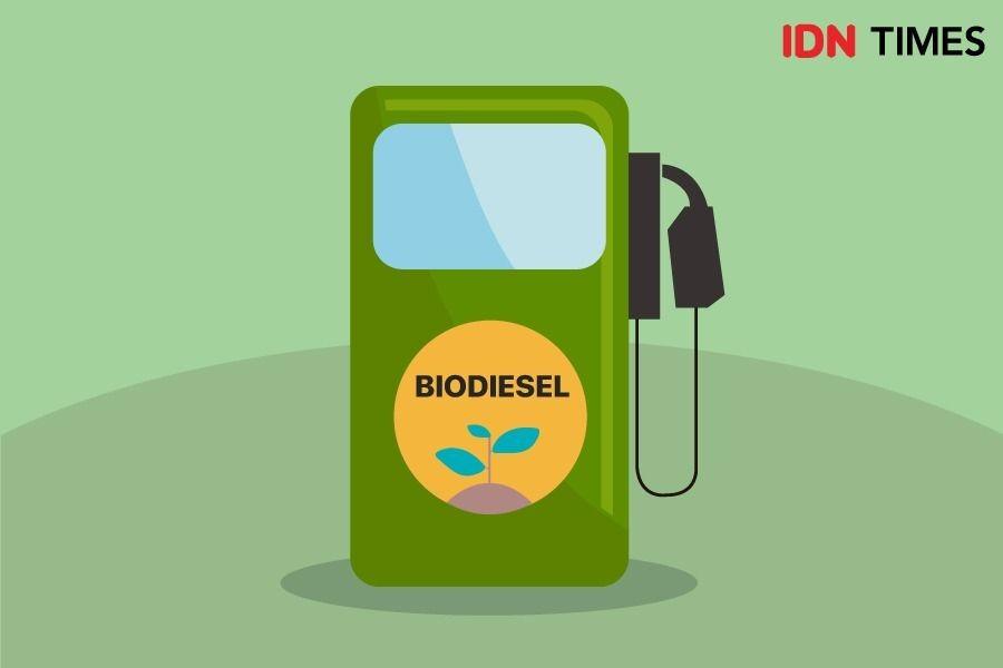 Membedah Kebijakan dan Plus-Minus Penggunaan Biodiesel di Indonesia