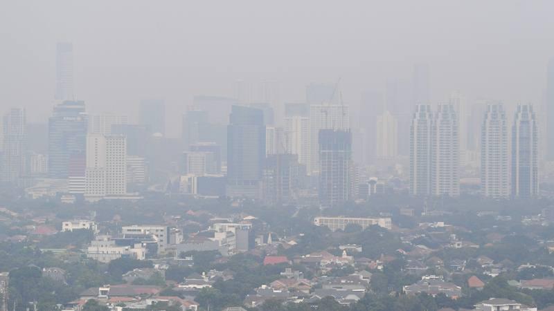 Udara Jakarta Tak Sehat, Greenpeace Desak Pemprov DKI Inventarisasi Emisi