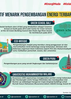 Inisiatif Non-Pemerintah Energi Terbarukan