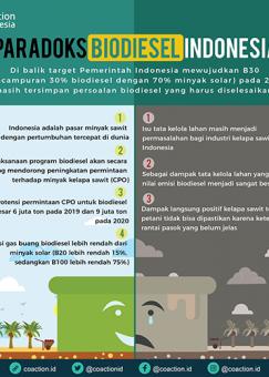 Paradoks Biodiesel Indonesia